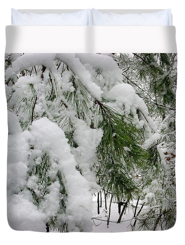 Kathy Bucari Duvet Cover featuring the photograph Snow Covered Branches by Kathy Bucari