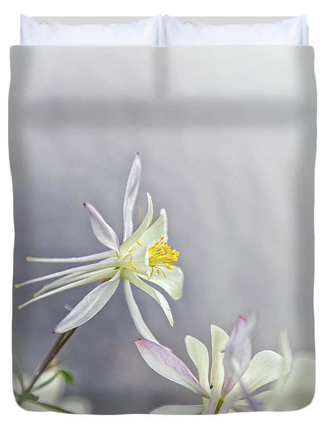 Duvet Cover featuring the photograph Snowy Columbine by Erin Schwartzkopf