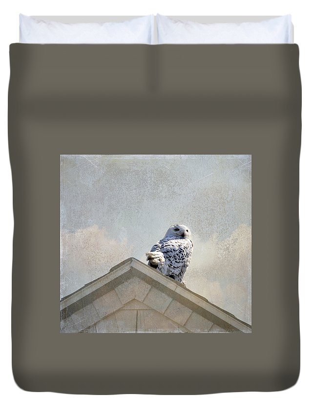 Bird Duvet Cover featuring the photograph Snowy Owl by Betty Pauwels