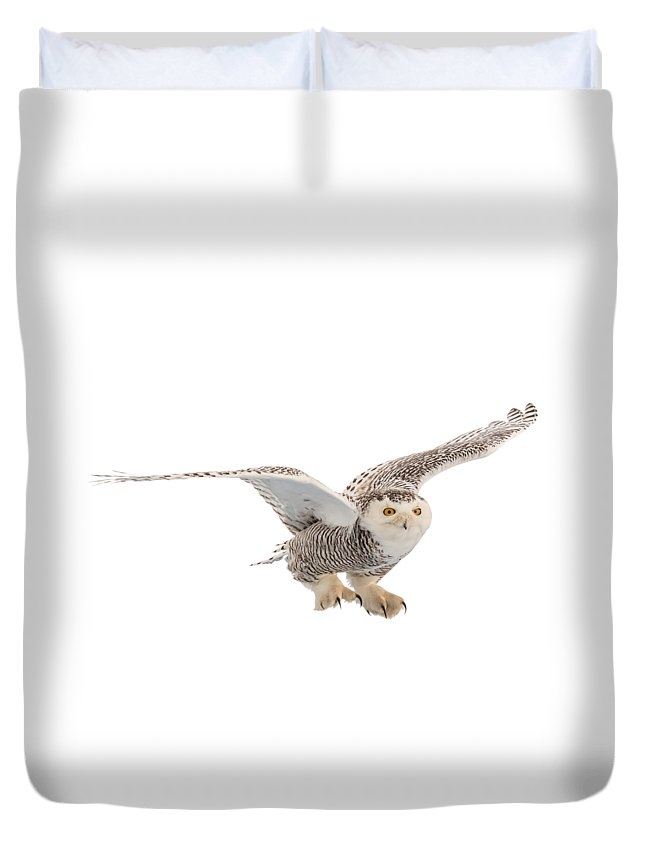 Snowy Duvet Cover featuring the photograph Snowy Owl T-shirt Mug Graphic by Everet Regal