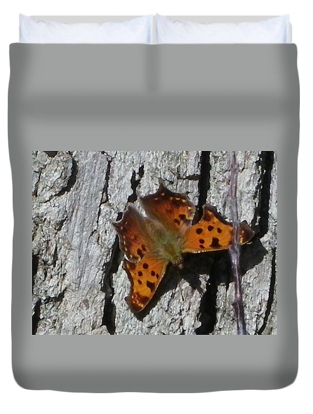 Moth Duvet Cover featuring the photograph Soakin Up The Autumn Sun by Peggy King