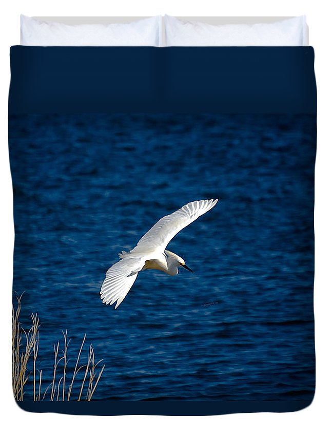 Bird Duvet Cover featuring the digital art Soaring Snowy Egret by DigiArt Diaries by Vicky B Fuller
