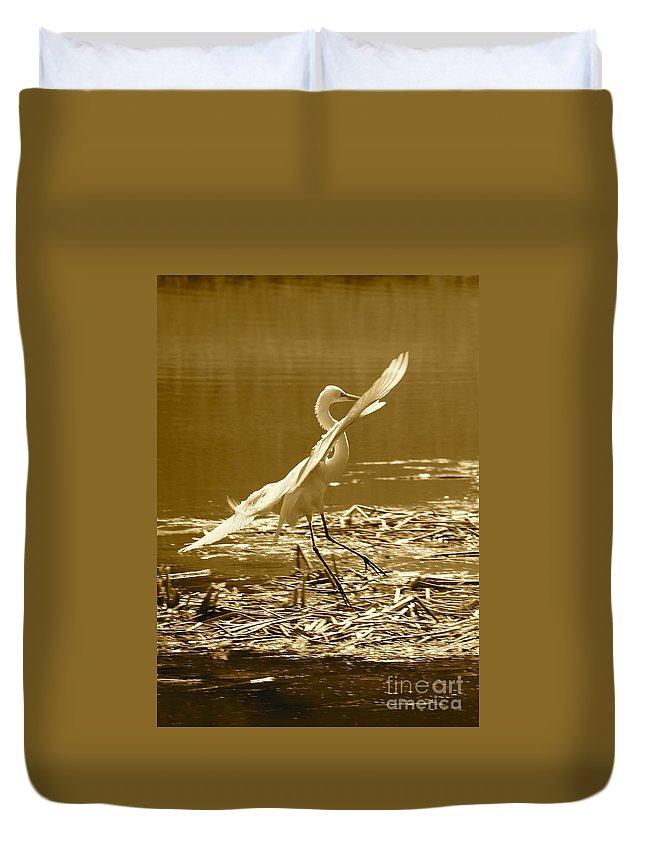 Bird Duvet Cover featuring the photograph Soft Landing by Carol Groenen