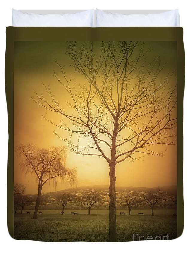 Trees Duvet Cover featuring the photograph Soft Light In Summerland by Tara Turner