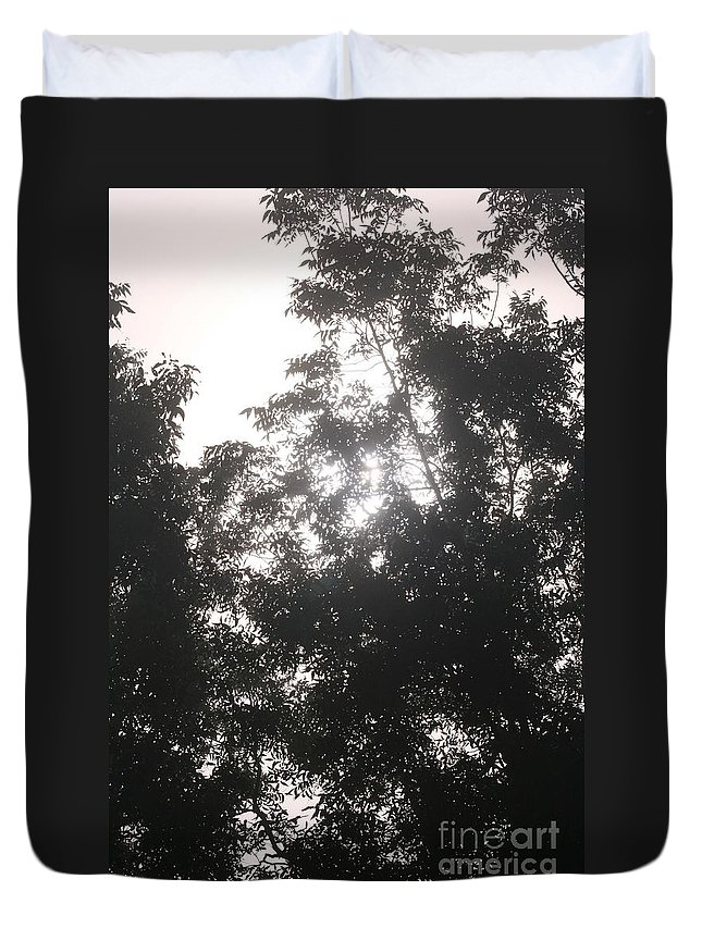 Light Duvet Cover featuring the photograph Soft Light by Nadine Rippelmeyer
