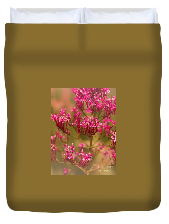Flower Duvet Cover featuring the photograph Soft Pirouette by Linda Shafer