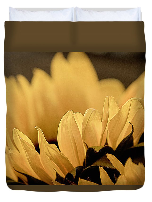 Nature Duvet Cover featuring the photograph Soft Summer Light 2 by Teresa Wilson