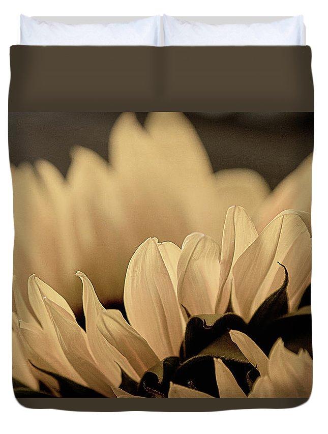 Nature Duvet Cover featuring the photograph Soft Summer Light 3 by Teresa Wilson