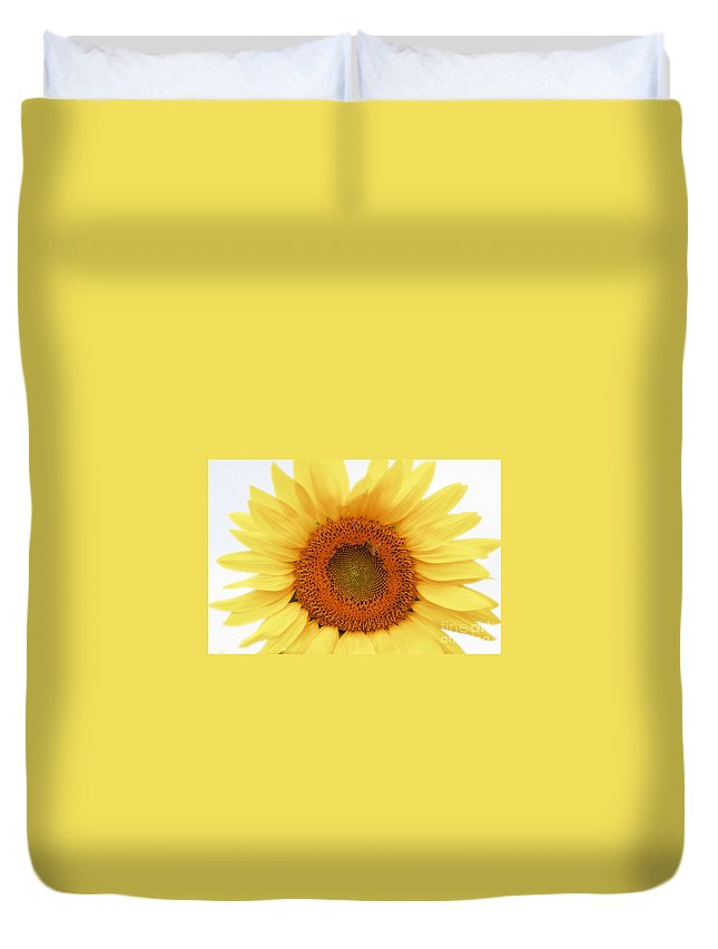 Sunflower Duvet Cover featuring the photograph Soft Sunflower by Kathleen Struckle