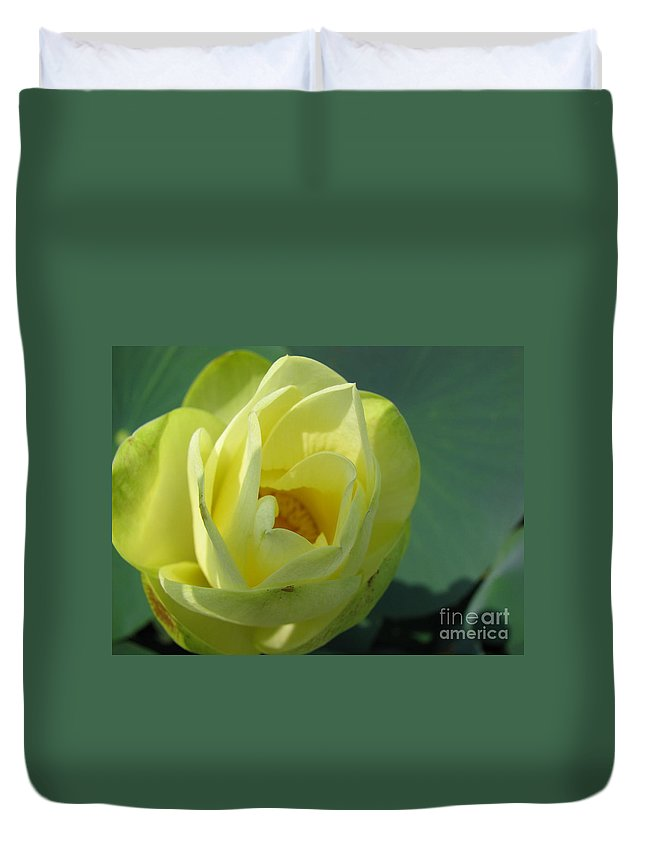 Lotus Duvet Cover featuring the photograph Softly by Amanda Barcon
