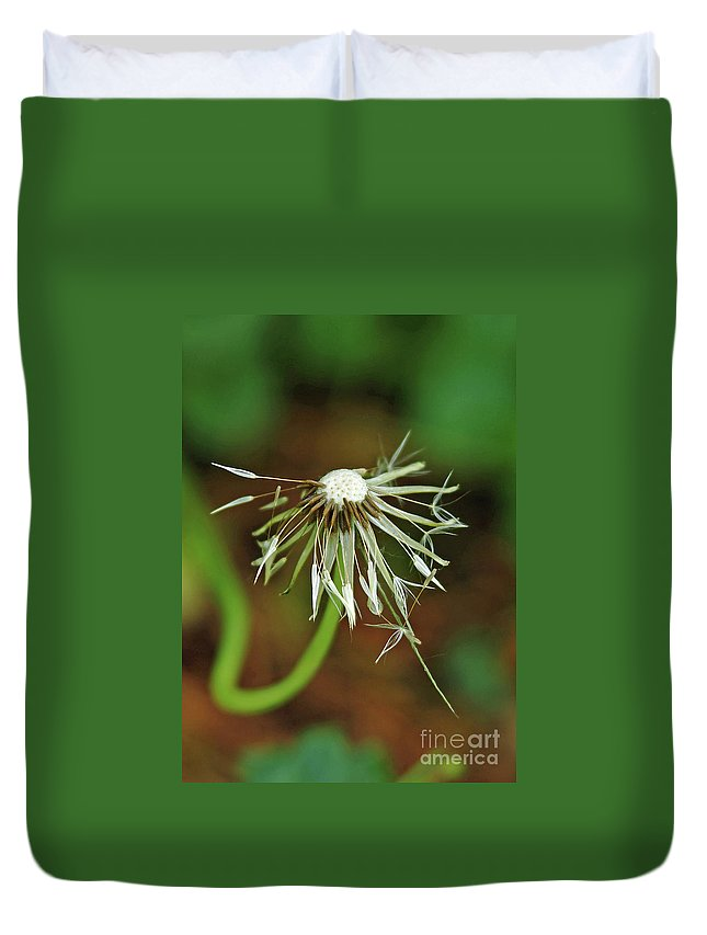 Water Duvet Cover featuring the photograph Soggy Dandelion by Robin Clifton