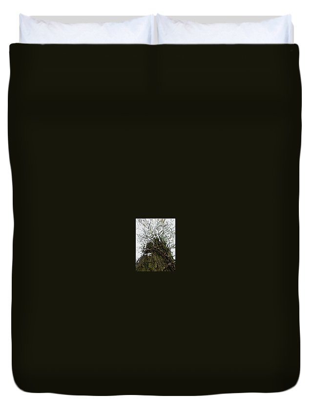 Tree Duvet Cover featuring the photograph Solid by Maria Joy