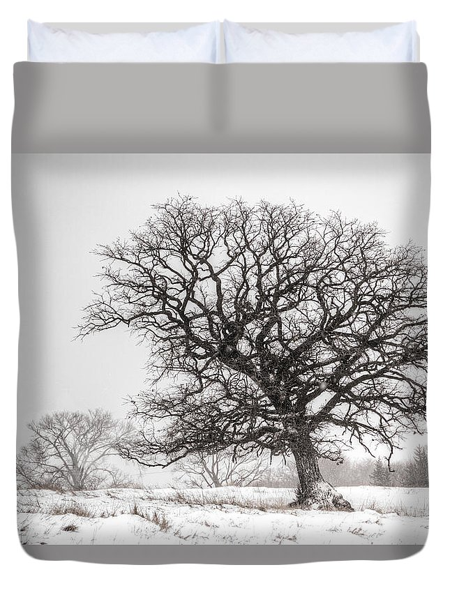 Oak Duvet Cover featuring the photograph Solid Oak by Mark Pearson