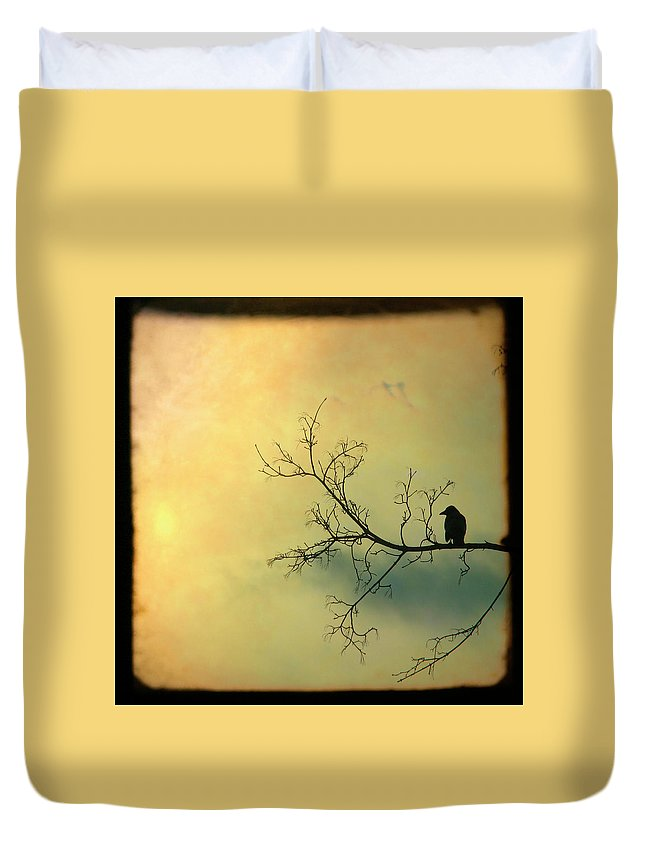 Through The Viewfinder Duvet Cover featuring the photograph Solitude Mood by Gothicrow Images