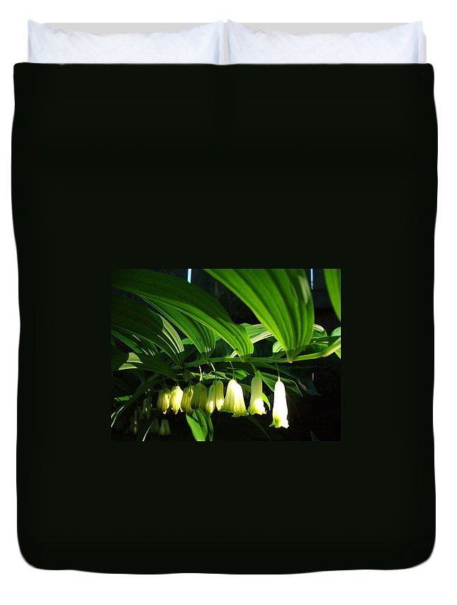 Solomon Seal Duvet Cover featuring the photograph Solomon's Seal by Peggy King