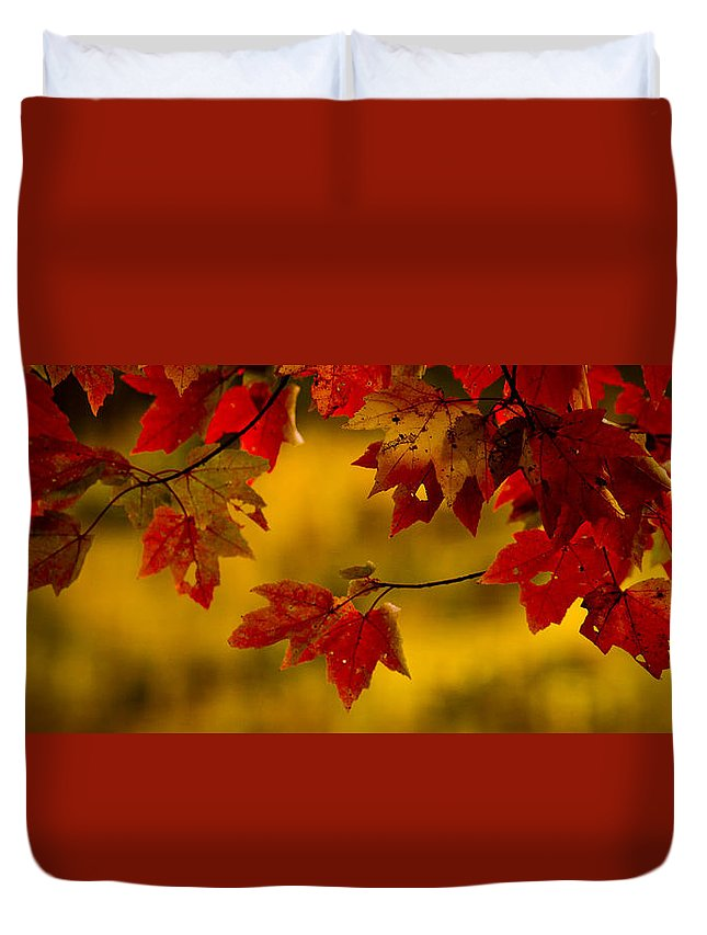 Autumn Color Duvet Cover featuring the photograph Soon Enough by Albert Seger