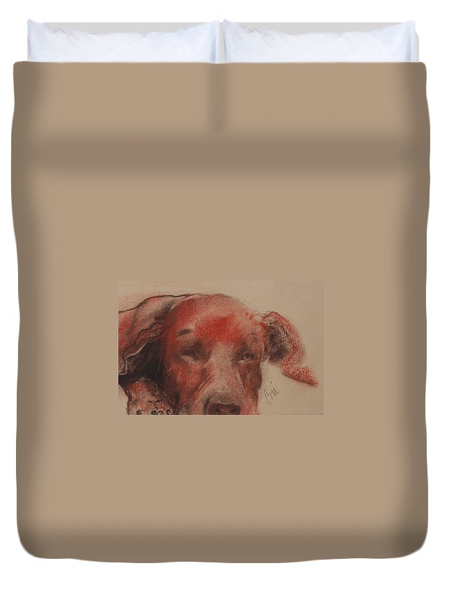 Pastel Duvet Cover featuring the drawing Soul Searcher by Cori Solomon
