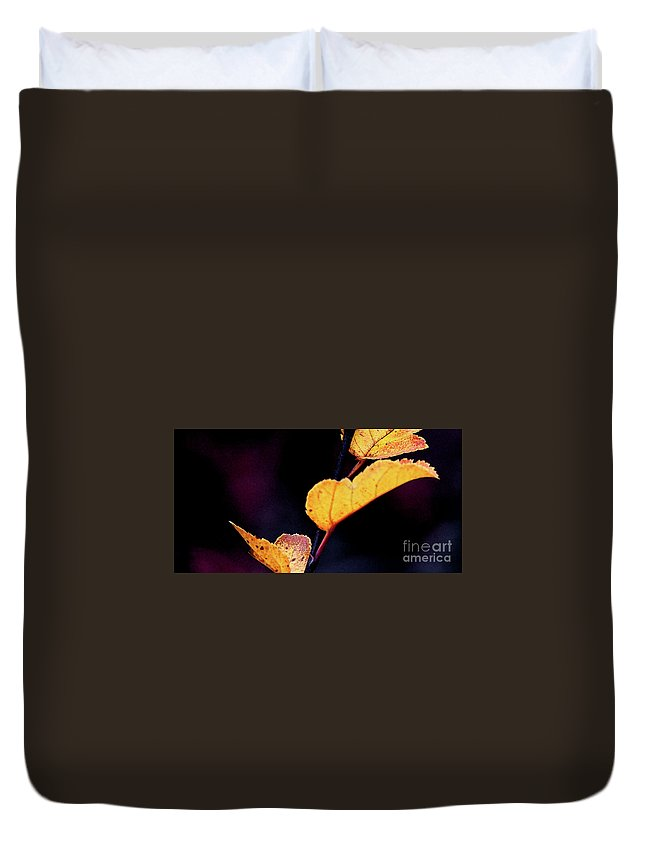 Leaves Duvet Cover featuring the photograph Souls Approach by Linda Shafer