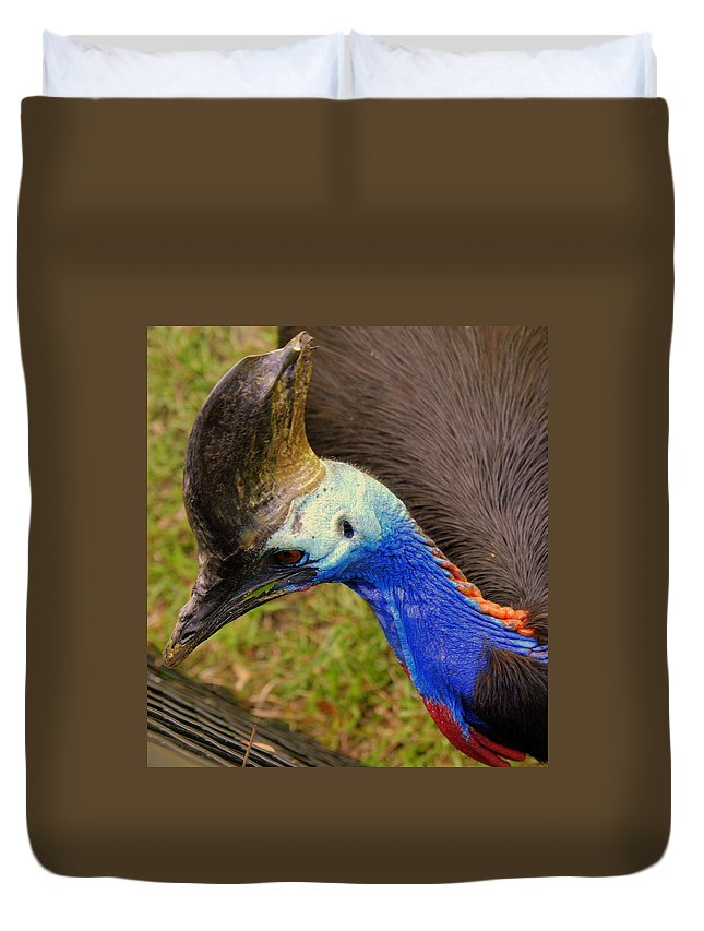 Southern Cassowary Duvet Cover featuring the photograph Southern Cassowary by Susanne Van Hulst