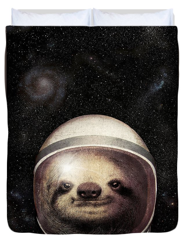 sloth astronaut picture - 500×708