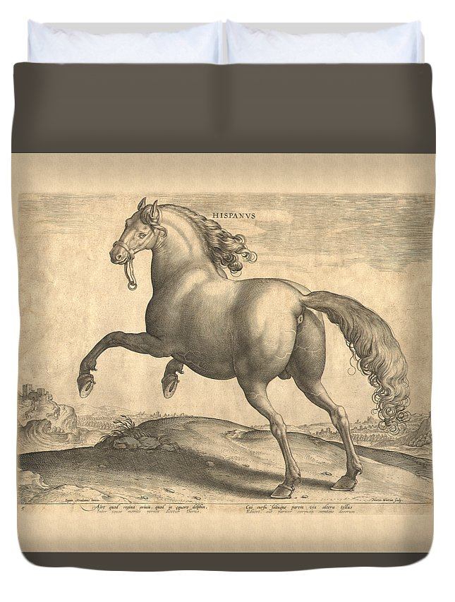 Horse Duvet Cover featuring the digital art Spanish Horse Renaissance Engraving by Village Antiques