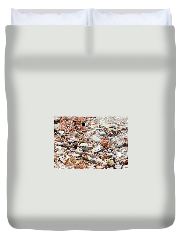 Florida Duvet Cover featuring the photograph Sparkling Shells by Carol Groenen