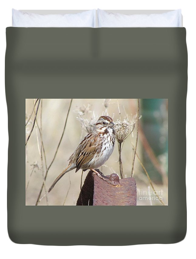 Sparrow Duvet Cover featuring the photograph Sparrow 2 by James Seitzinger