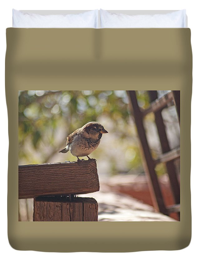 Sparrow Duvet Cover featuring the photograph Sparrow. by Robert Rodda