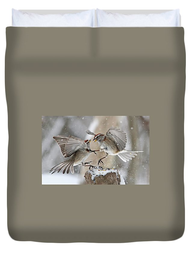 Tree Duvet Cover featuring the photograph Sparrows by Mircea Costina Photography