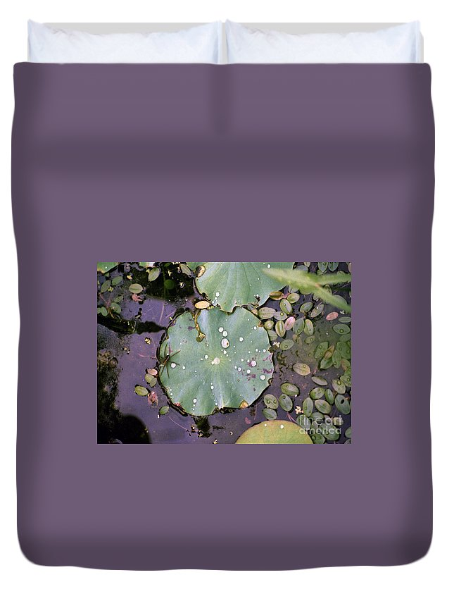Lillypad Duvet Cover featuring the photograph Spider And Lillypad by Richard Rizzo