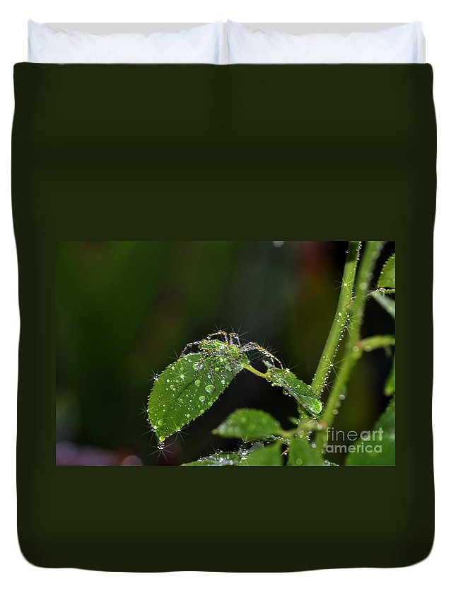 Clay Duvet Cover featuring the photograph Spider And The Shower by Clayton Bruster