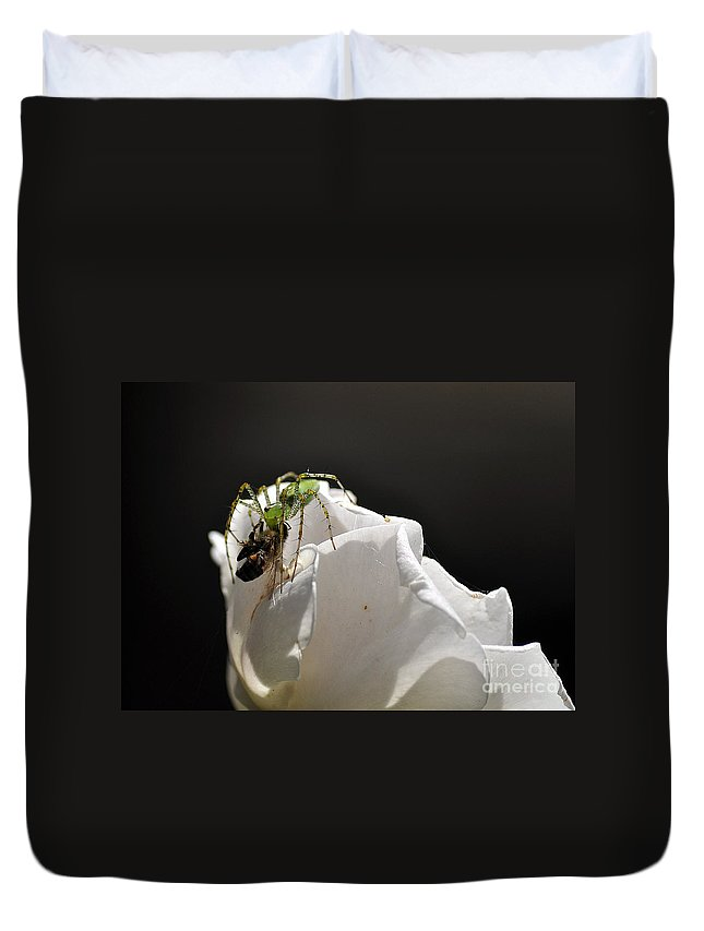 Clay Duvet Cover featuring the photograph Spider Vs Bee On Rose by Clayton Bruster