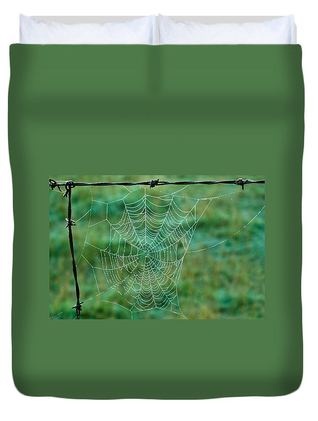 Spider Duvet Cover featuring the photograph Spider Web In The Springtime by Douglas Barnett