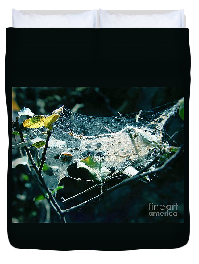 Spider Duvet Cover featuring the photograph Spider Web by Peter Piatt