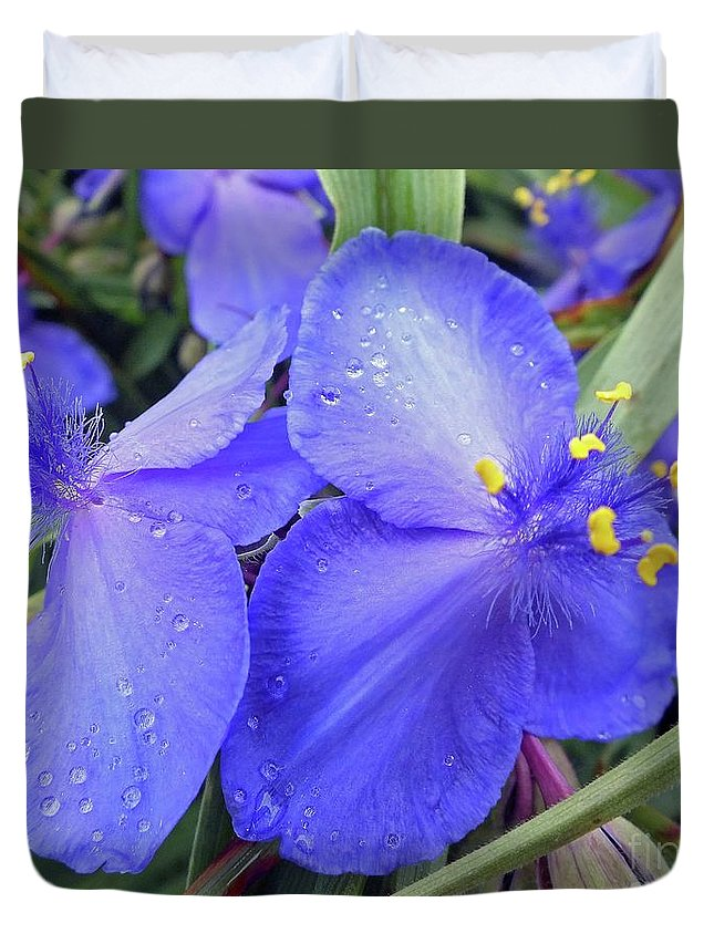 Spiderwort Duvet Cover featuring the photograph Spiderwort by Cindy Treger