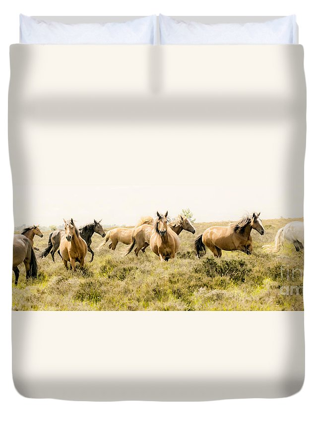 Horse Duvet Cover featuring the photograph Spirit Of The Horse by Jason Christopher