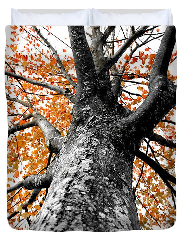 Tree Duvet Cover featuring the photograph Splash Of Color by Greg Fortier