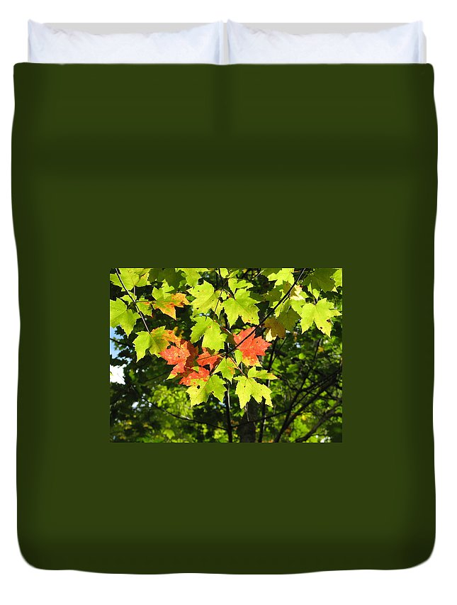 Fall Duvet Cover featuring the photograph Splattered Paint by Kelly Mezzapelle