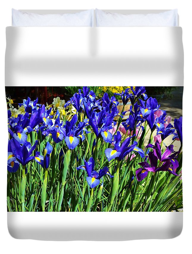 Iris Duvet Cover featuring the photograph Vivid Blue Iris Flowers by Cherie Cokeley