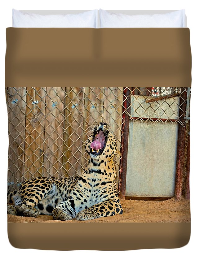 Leopards Duvet Cover featuring the photograph Spot by Donna Shahan