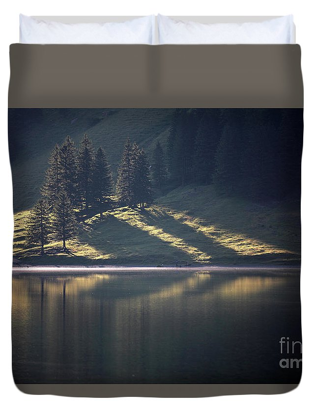 Trees Duvet Cover featuring the photograph Spot On by Jana Behr