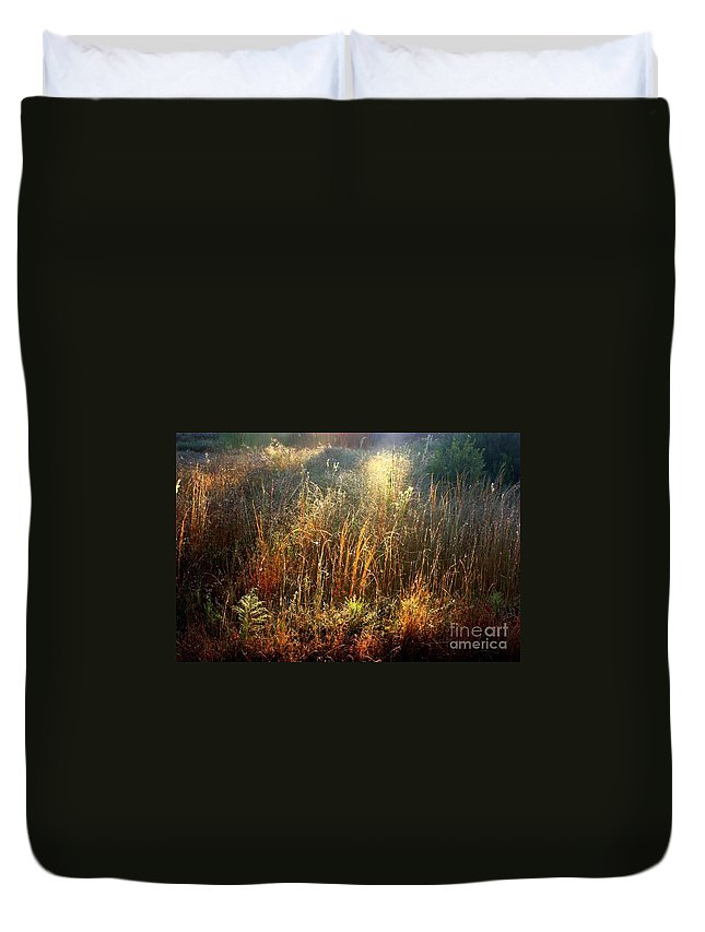Marsh Duvet Cover featuring the photograph Spotlight On The Marsh by Carol Groenen