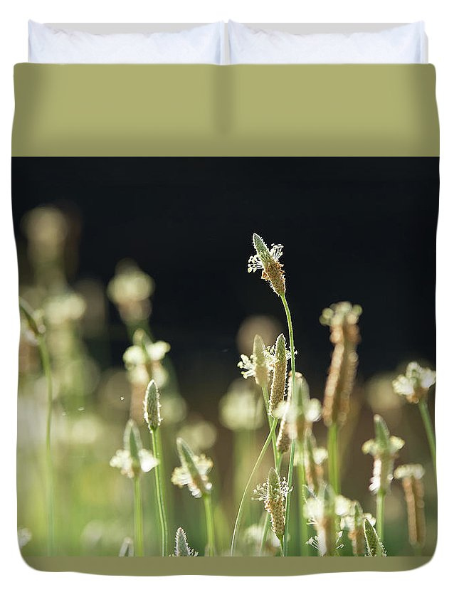 Spring Duvet Cover featuring the photograph Spring Arrives by MotionOne Studios