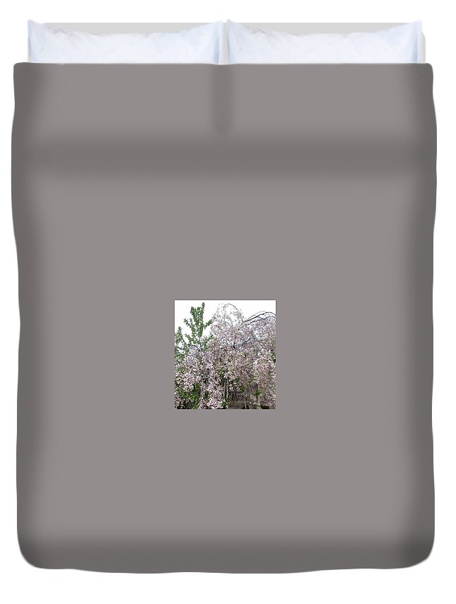 Purple Tree Duvet Cover featuring the photograph Spring Blooms by Peggy Chambers