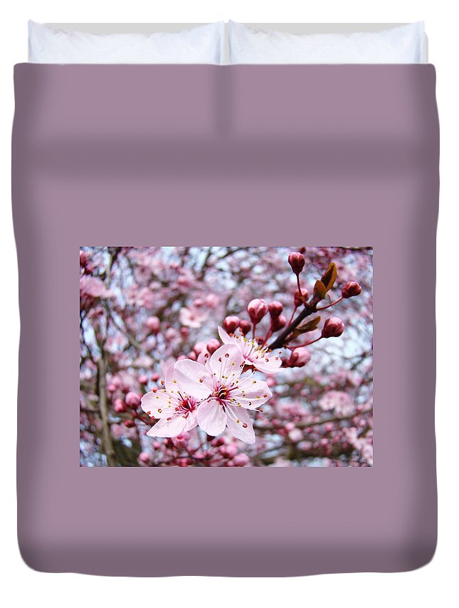 Blossom Duvet Cover featuring the photograph Spring Blossoms Art Pink Tree Blossom Baslee Troutman by Baslee Troutman