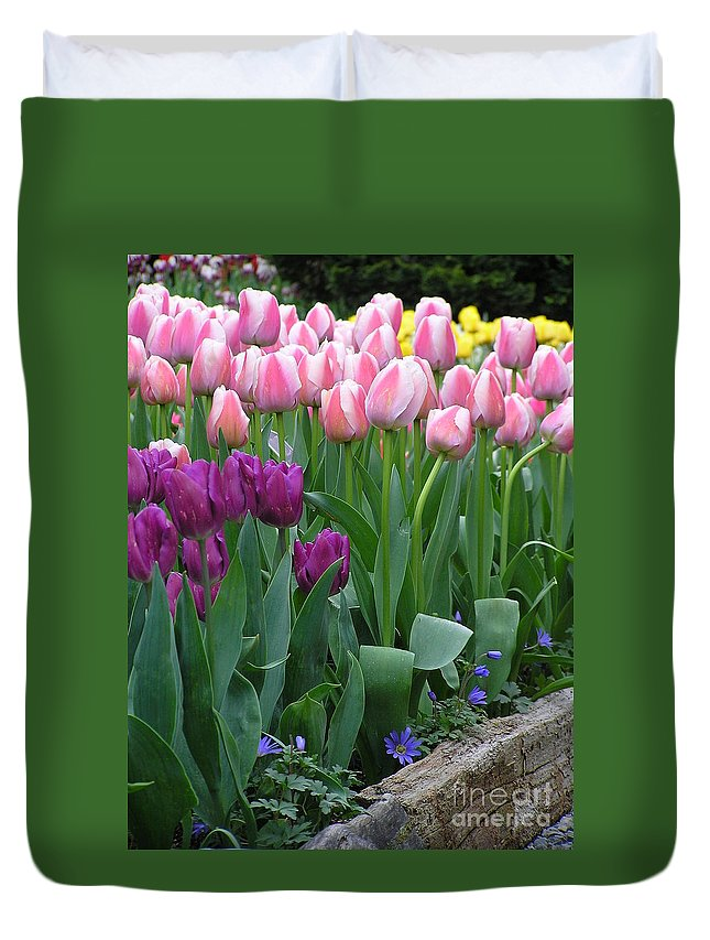 Tulips Duvet Cover featuring the photograph Spring Colors by Louise Magno