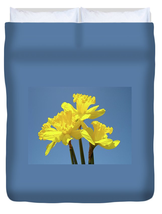 Daffodils Duvet Cover featuring the photograph Spring Daffodil Flowers Art Prints Canvas Framed Baslee Troutman by Baslee Troutman