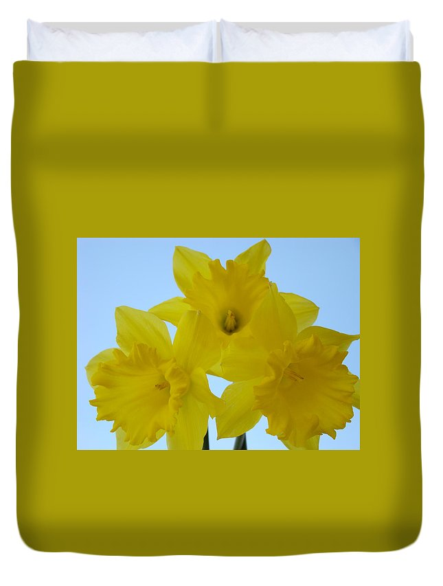 �daffodils Artwork� Duvet Cover featuring the photograph Spring Daffodils 2 Flowers Art Prints Gifts Blue Sky by Baslee Troutman
