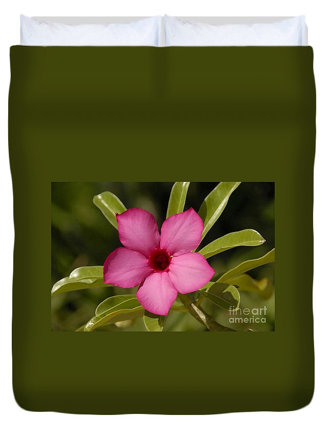 Spring Duvet Cover featuring the photograph Spring by David Lee Thompson