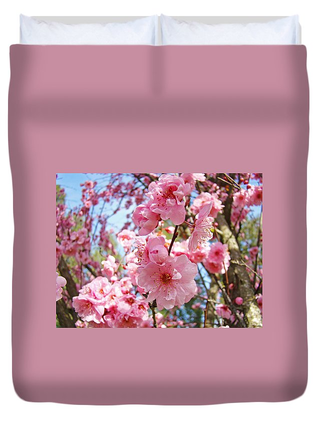 Colorful Duvet Cover featuring the photograph Spring Floral Art Prints Pink Tree Blossoms by Baslee Troutman